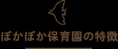 ぽかぽか保育園の特徴